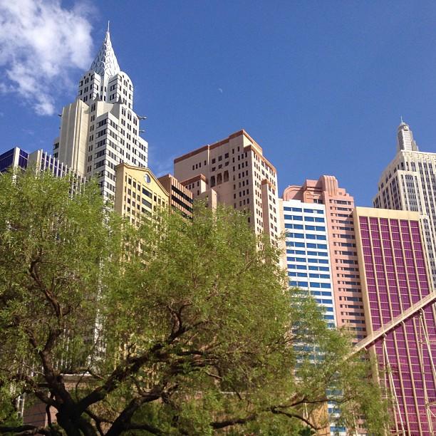 Vegas, bambino, Vegas... 105 degrees at 4pm...